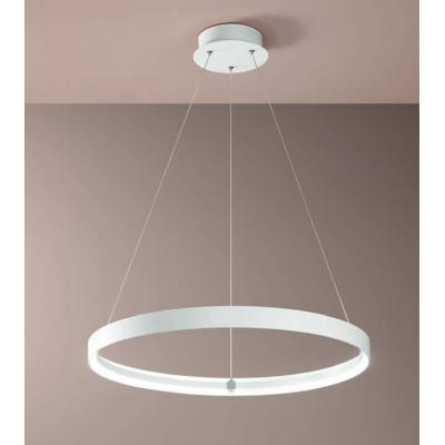 Double Suspension lamp...
