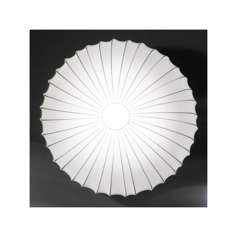 Axo Light,wall, PL MUSE 40